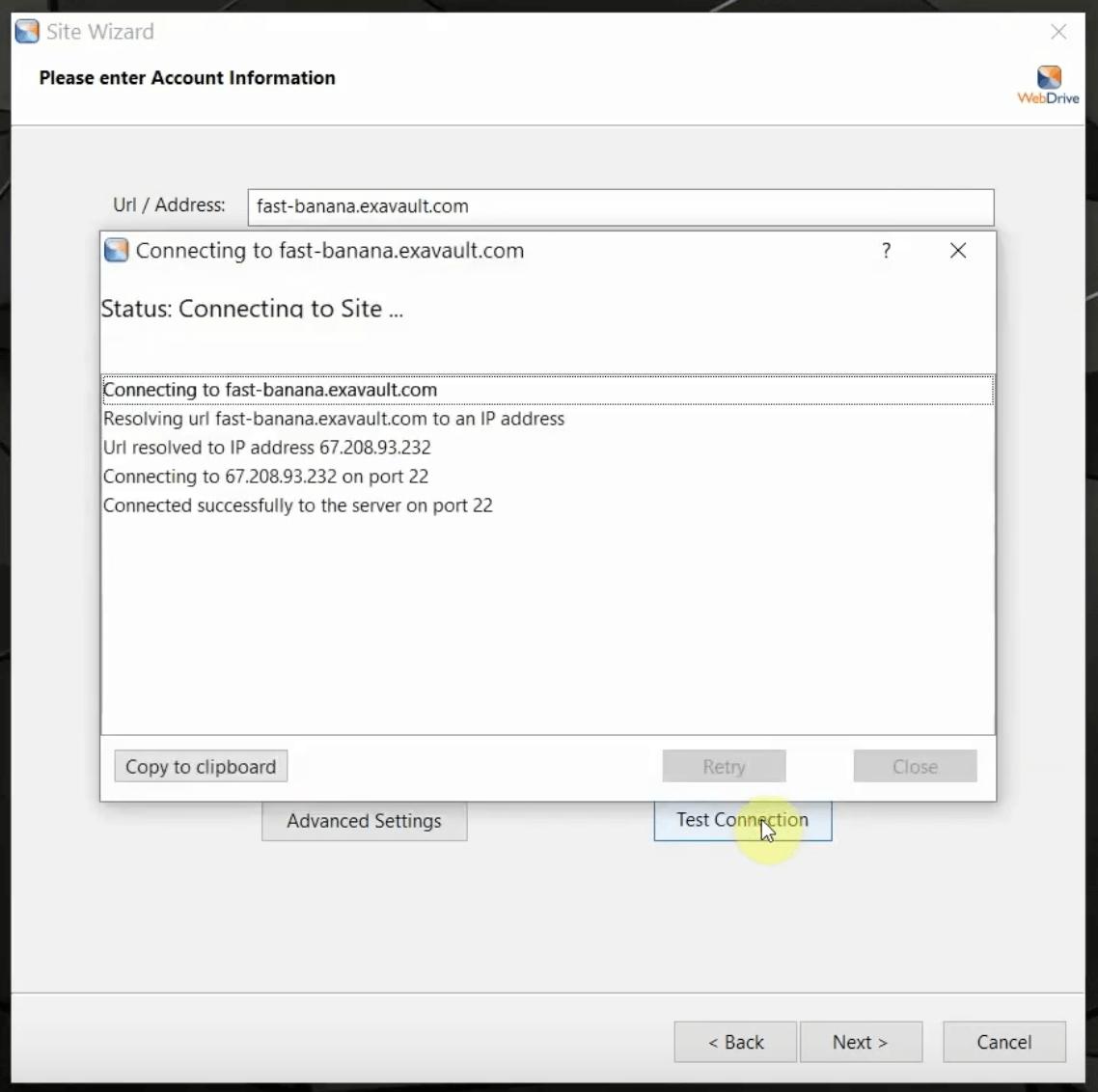 WebDrive Patch
